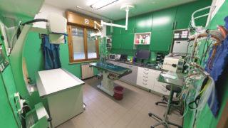 Studio veterinario sala chirurgie